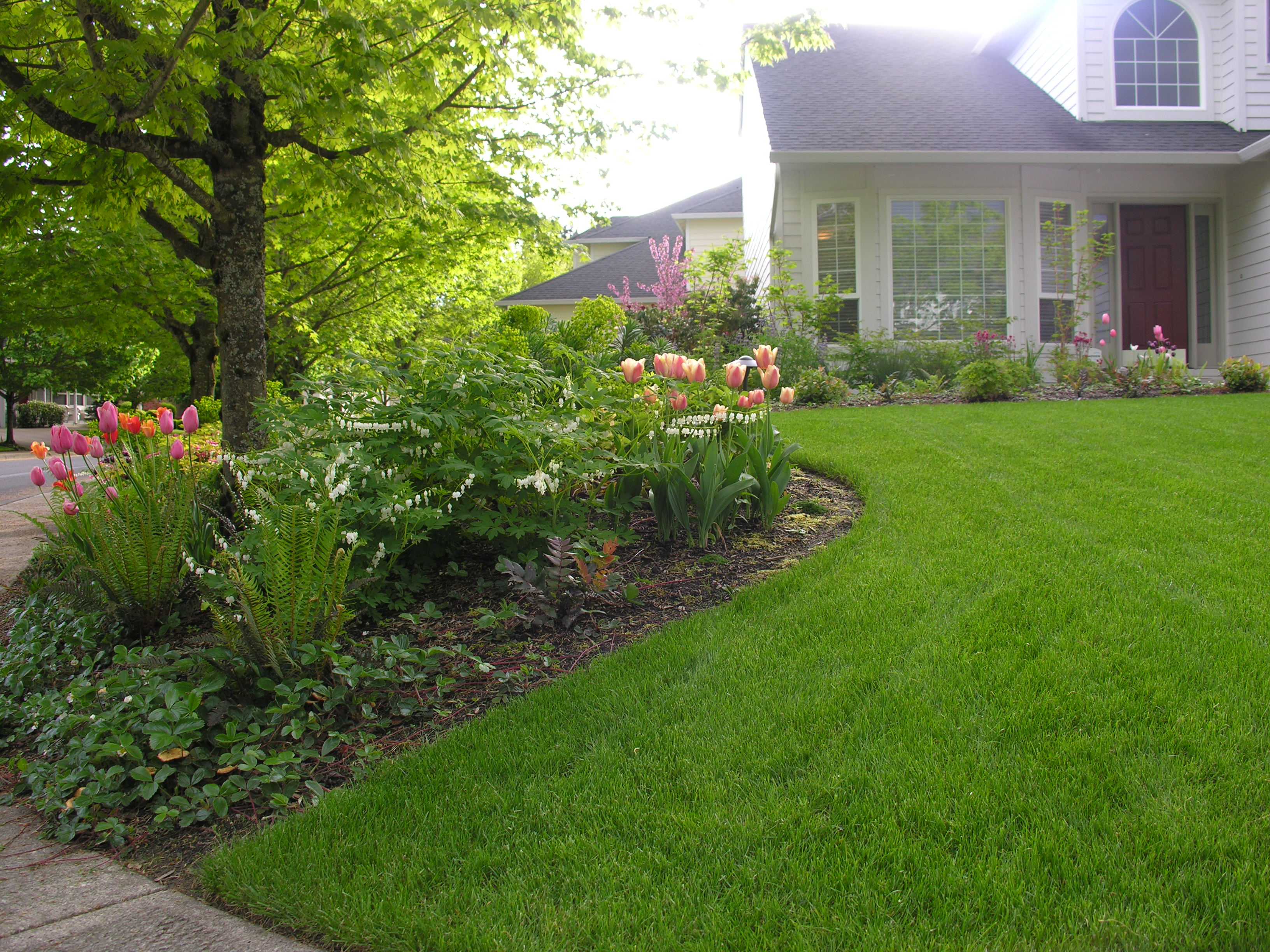 Tips and Ideas for Landscape Design in Your Own Backyard ...